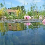 BIOTOP Schwimmteiche -Gartenteich