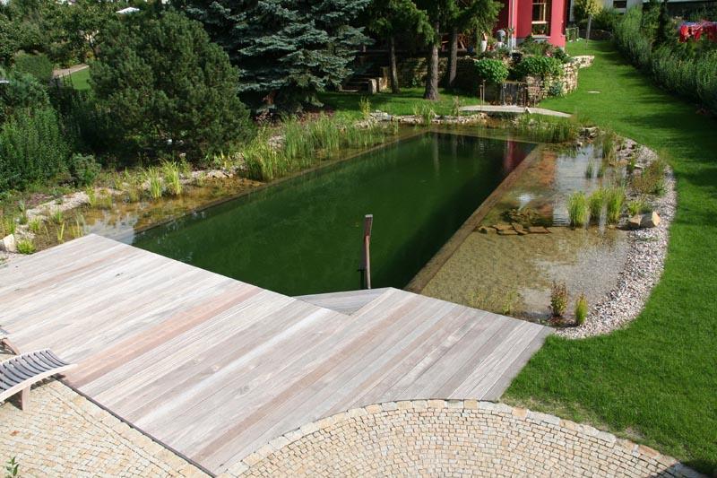 Top Schwimmteiche Fur Kleine Garten Ja63 Casaramonaacademy