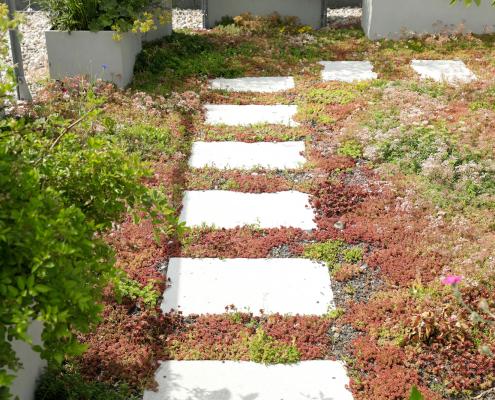 Bepflanzung einer Dachterrasse