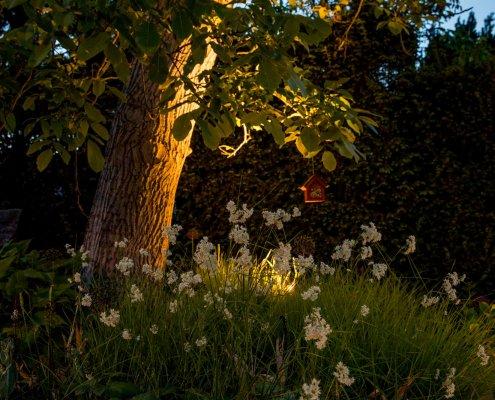 Gartenbeleuchtung Licht im Garten