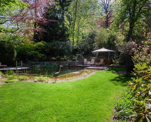 Pflanzreicher Garten, Gartenteich
