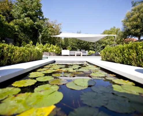 Biotop Living-Pool mit Wasserrosen