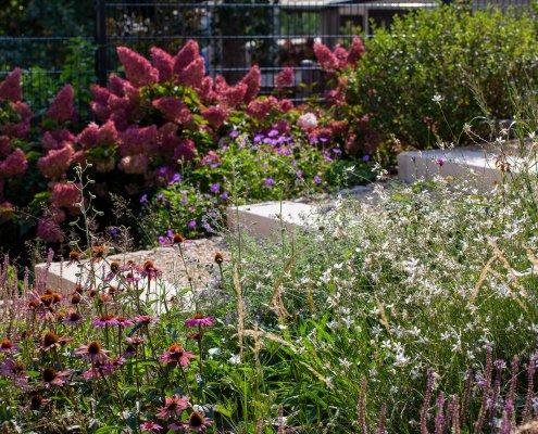 Pflanzplanung Gartenplanung