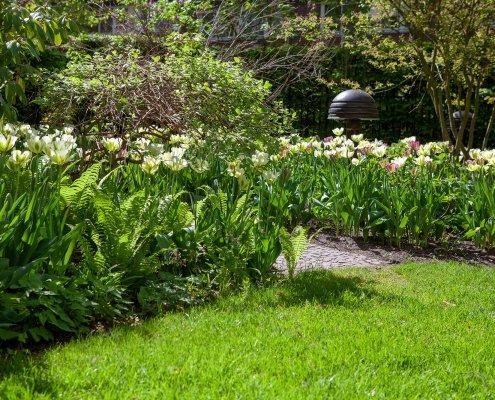 Pflanzreicher Garten