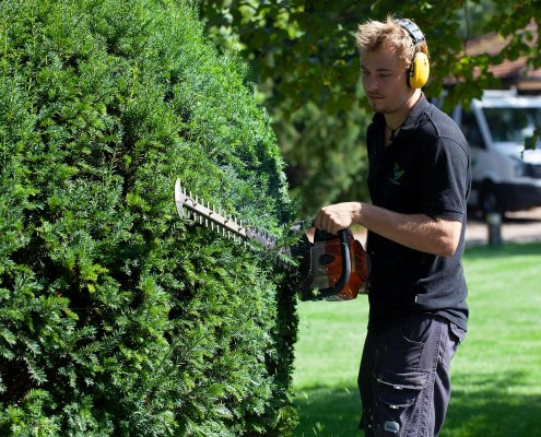 Gartenpflege Heckenpflege