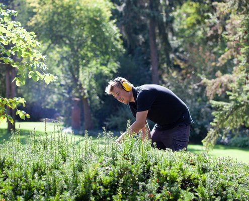 Gartenpflege Rapportpflege Jahrespflege