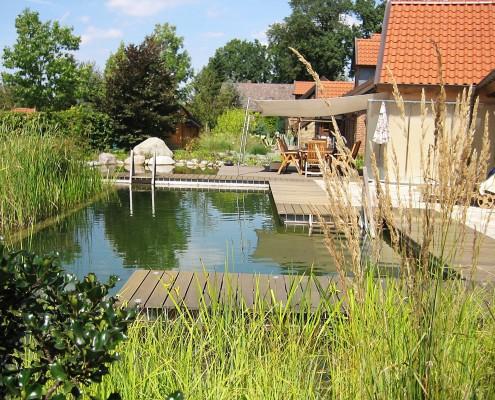 Der Biotop Swimmingteich mit klarem Wasser