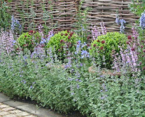 Sichtschutz aus Pflanzen und Gehölzen